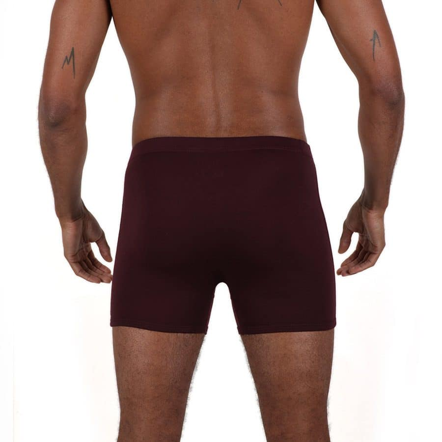 Boxer homme héritage micromodal dos prune